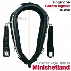 Collera Inglesa para enganche Pony Mini-Shetland