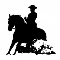 Pegatina caballos 14