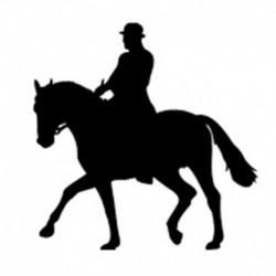 Pegatina caballos 15