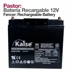 Batería recargable para pastor eléctrico 12V 47 A/h